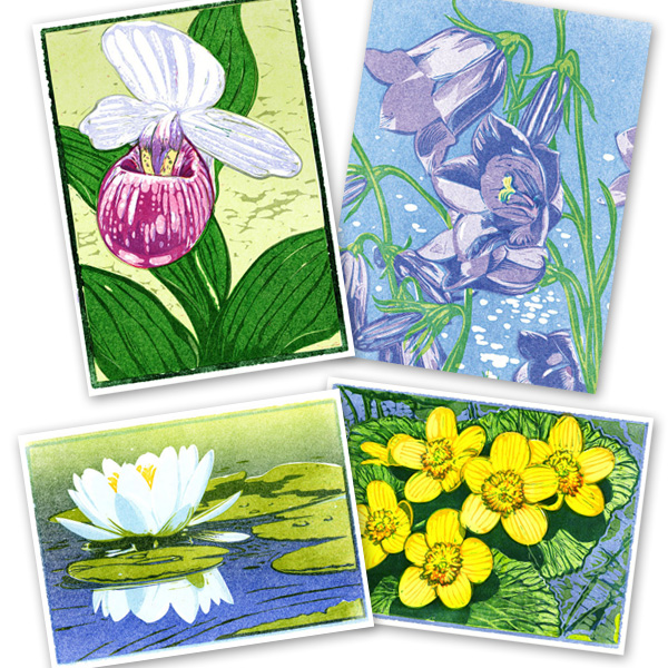 Flowers Notecard Set contains 4 cards